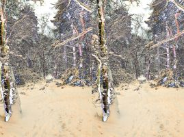 Stereoscopic Snow In A Woodland Of Luminous Trees by aegiandyad