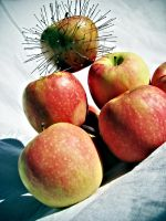Pinned Apple Dominating. by KatherineDavis