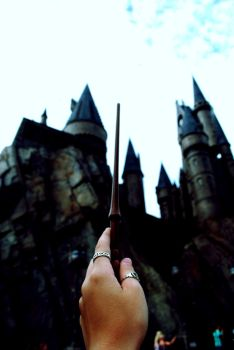 day twenty six- guide me home by chasingnargles