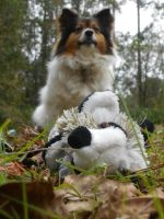 who cares about toys when you've got the outdoors by Colliequest