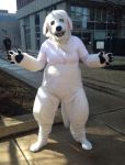 Naga the Polar Bear Dog Cosplay AB14 by PokemonMasta
