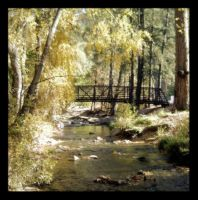 Two Rivers Park- Ruidoso, NM by Lady-Trevelyan