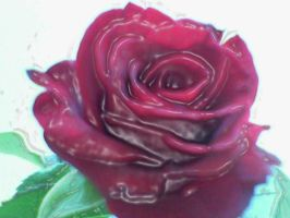 Wax rose by Maraskia