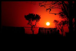 African Sunset by TonallyTormented