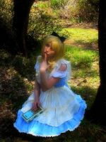 Dreaming Alice by Dolly-chan