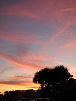 Cotton Candy Sunset by cyh-anide