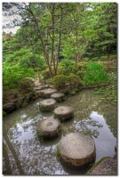 Stepping stones 2 by dragonslayero