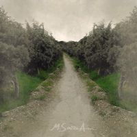 The Paradise Road by msaph