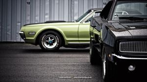 Charger+Cougar by AmericanMuscle