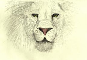 Aslan is come by Jon-Snow