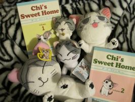 My Chi collection by Heatherannpt