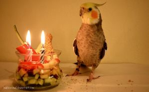 Happy 2nd hatchday Loofy! by BubbleCloud