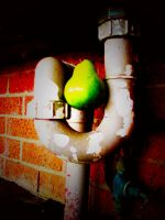 Pear Pipe by Pmore13