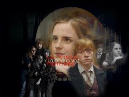 Hermione and Ron edition by desiredwings