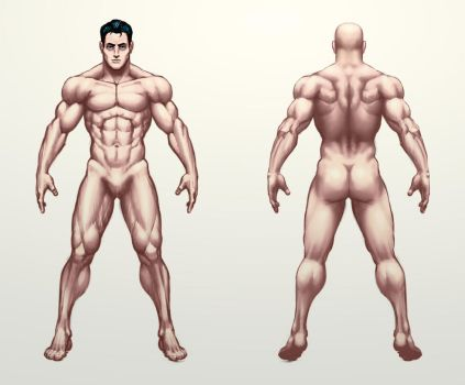 male study by Jiggeh