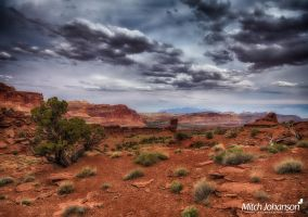 Soft Glow on the Red Dirt HDR by mjohanson