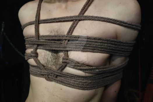 Rope Bound Torso by Ange1ica