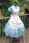 Alice in Wonderland Classic Dress and Pinafore by AliceinIvory