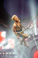 P!nk: The Truth About Love Tour #9 by JonShotFirst