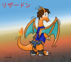 006 Charizard tf solo by inuebony