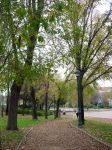 Autumn in park II by anakinpedro