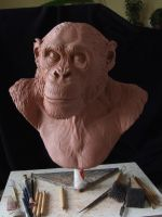 Chimpanzee sculpt.WIP front view by revenant-99
