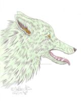 Rukah as Real Wolf Colored by RukahTsubasa