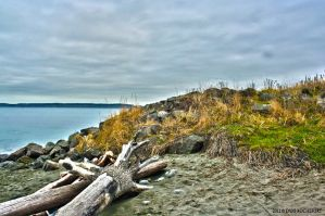 HDR Beach by steelrose13