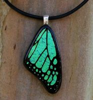 Med Green Butterfly Wing Glass by FusedElegance