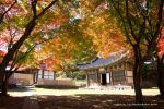 Magoksa Temple in Autumn by uncle-sam-hk