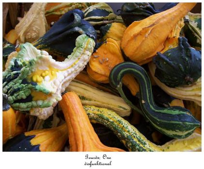 Gourds I by disFUNKtional
