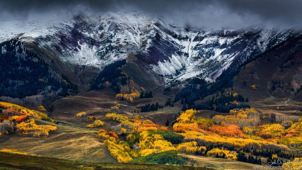 Fall In The West Elks by kkart
