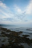 Lorne 7 by FallowpenStock