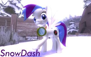 SnowDash Garrysmod Pony OC request by LunarGuardWhoof