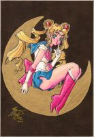 Sailor Moon - Over the Moon by MistressLegato