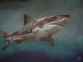 Great White Shark by Pastel-Lover