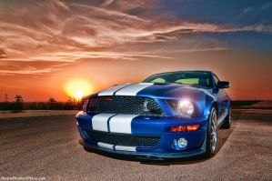 Shelby Mustang at Dusk by Bartonbo