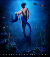 The Love of Mermaids by Wesley-Souza