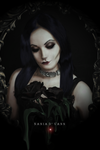 Roses to Morticia by Nania-D-Vann