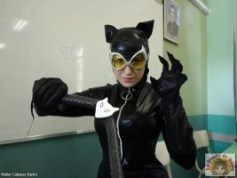 new 52 catwoman =^.~= by Carollinae