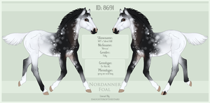 8691 Nordanner Foal by SWC-arpg