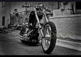 Easy Rider by PanosPS