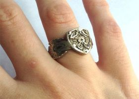 Hyrule shield and Master Sword ring by knil-maloon