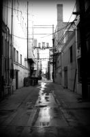 In the Alley by KaturahTRS