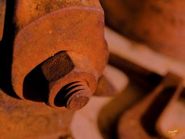 The Rusted Nut by Swanee3