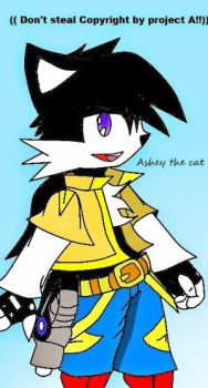 Asheyda the cat Remake by mr-pachiful