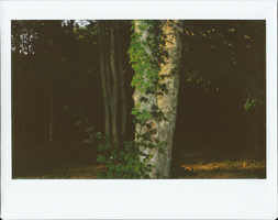 Instax 10 by chrisaclef