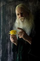 2015-05-19 Elder Portraits 12 by skydancer-stock