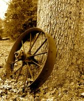 Old Wagon Wheel by alimuse
