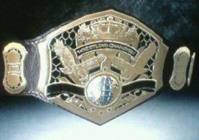 The Rumble Roses United States Championship by TheRumbleRoseNetwork